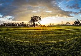 Trieste Golf Club | Golf i Friuli-Venezia Giulia