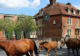 The Bell Inn and Bramshaw Golf Resort