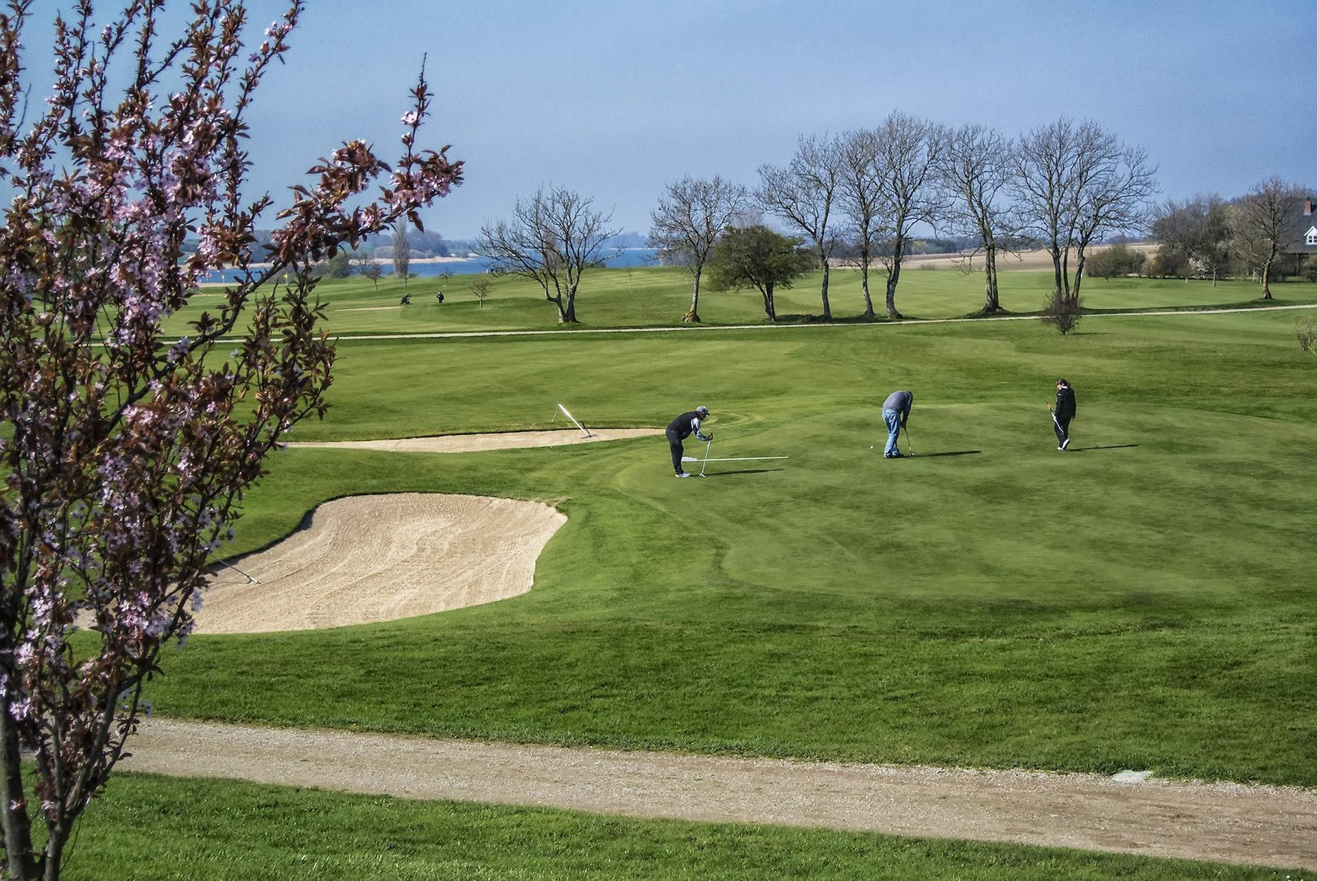 Møn Golf Center - Nordicgolfers.com