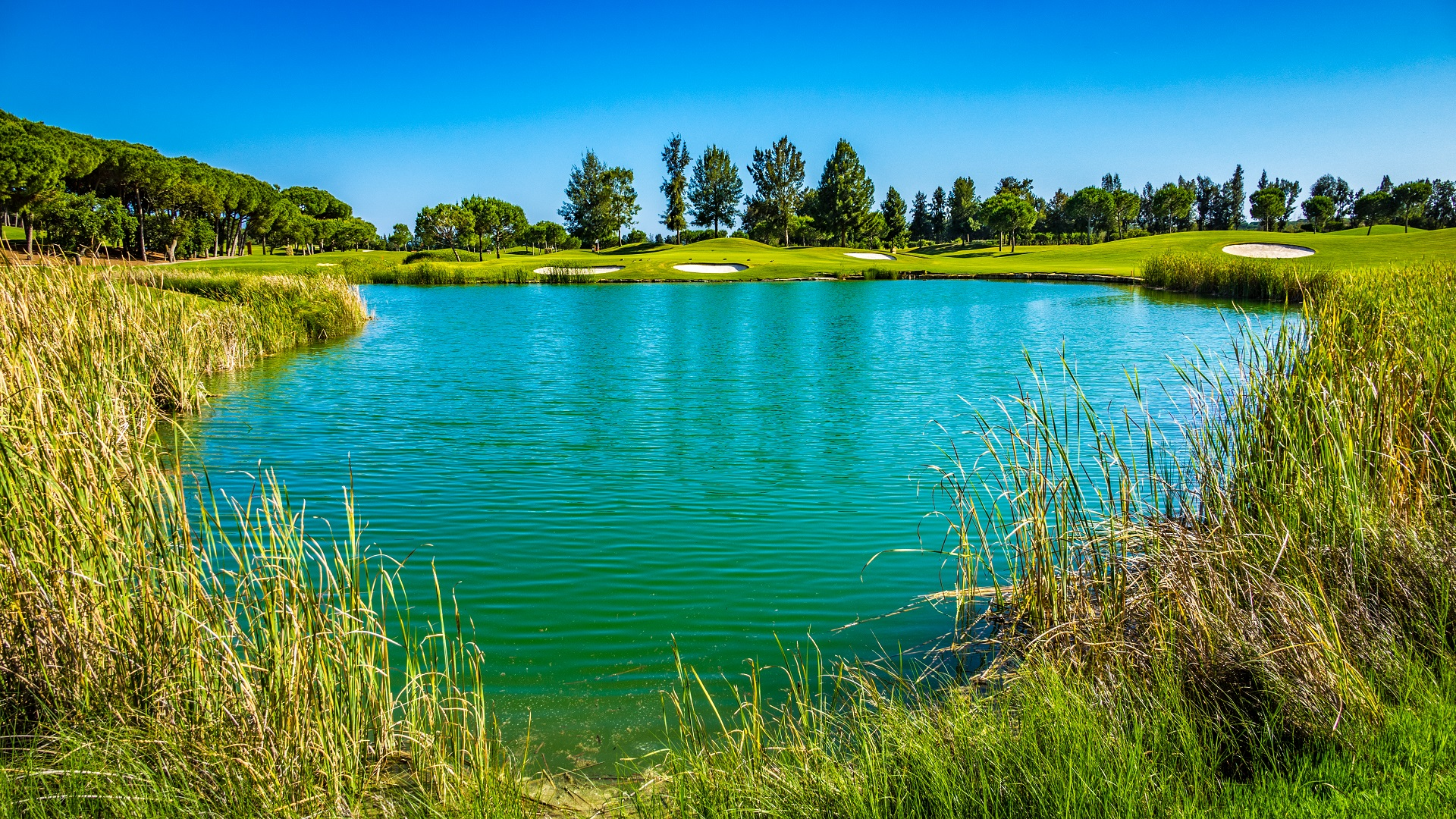 Quinta do Lago Resort | Golf på Algarve